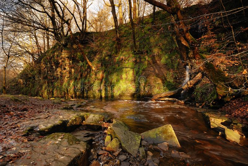 An Autumn Stream