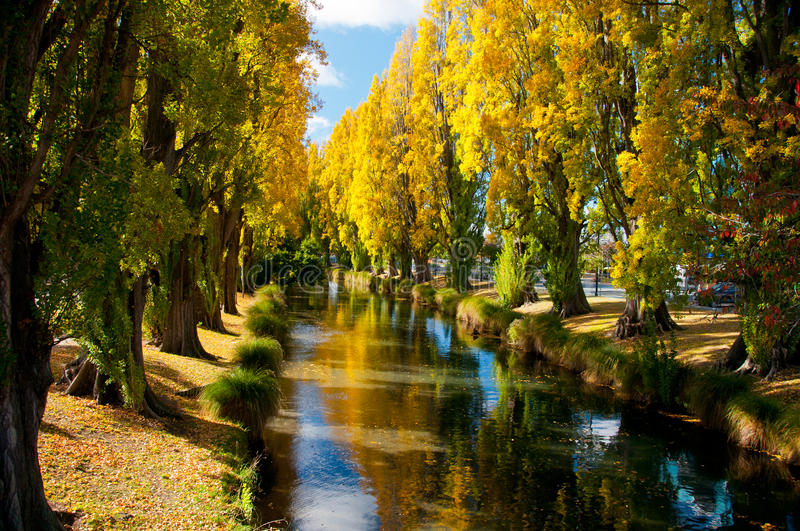 Download Autumn Stream stock image. Image of tree, scenic, christchurch - 26010139