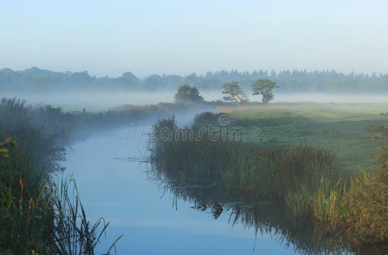 Autumn Stream photos stock