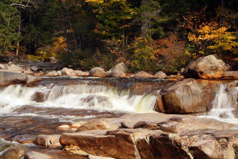 Autumn Stream Royalty Free Stock Image