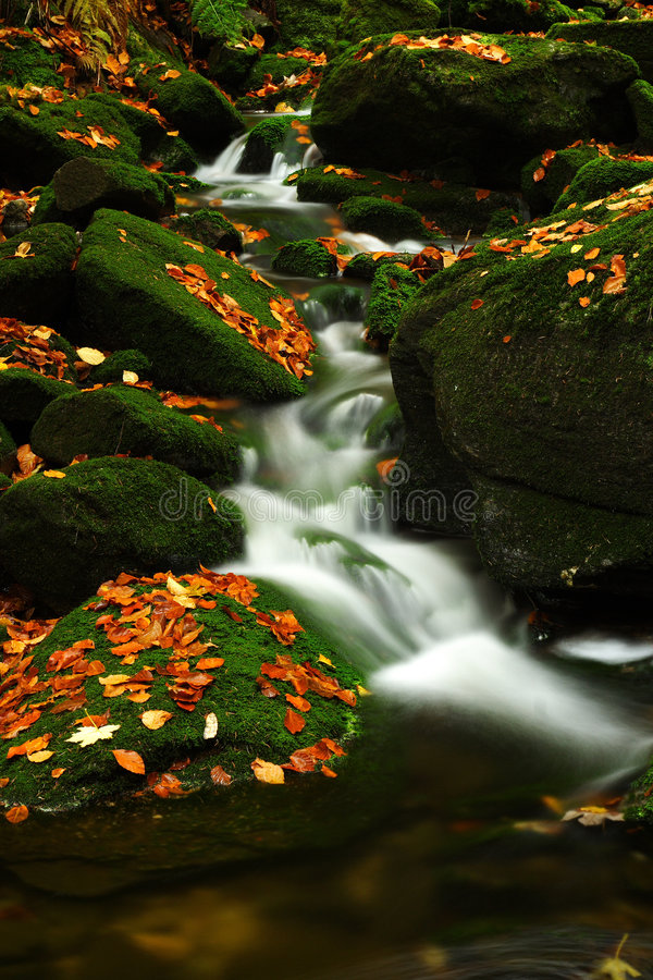 Download Autumn Stream In Giant Mountains Stock Photo - Image: 1006458