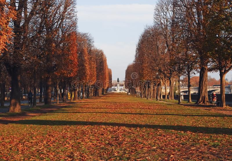 Autumn Stroll in Paris royalty free stock photography