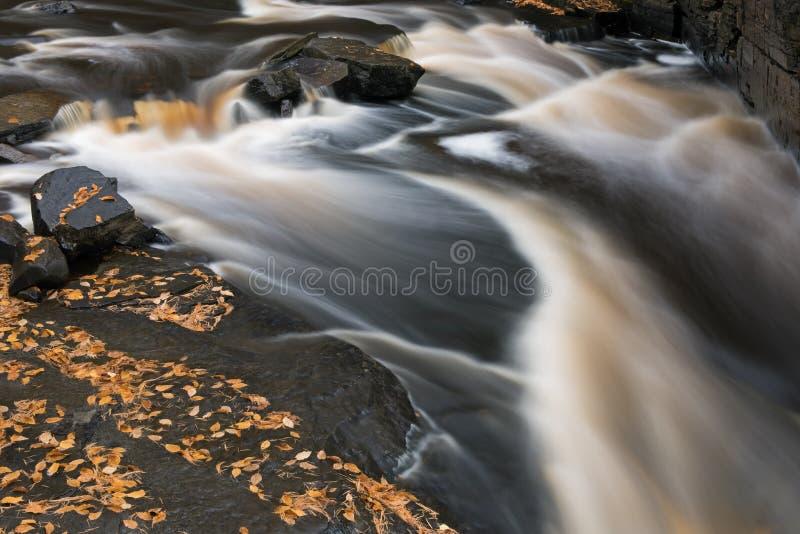 Autumn Sturgeon River arkivfoton
