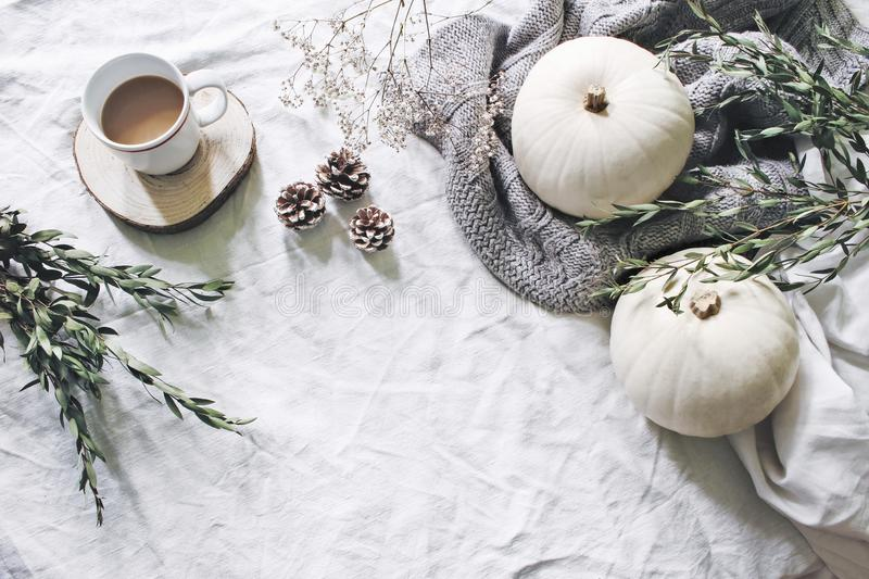 Autumn styled photo. Feminine Halloween desktop scene. Cup of coffee, eucalyptus, pine cones, white pumpkins and stock photography