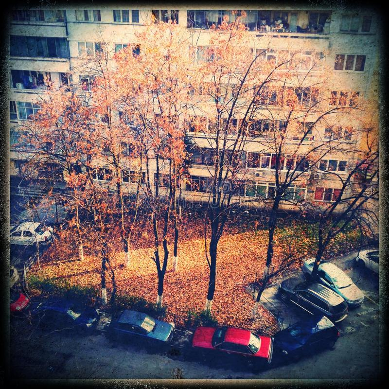 Autumn Sunlight In City Royalty Free Stock Images
