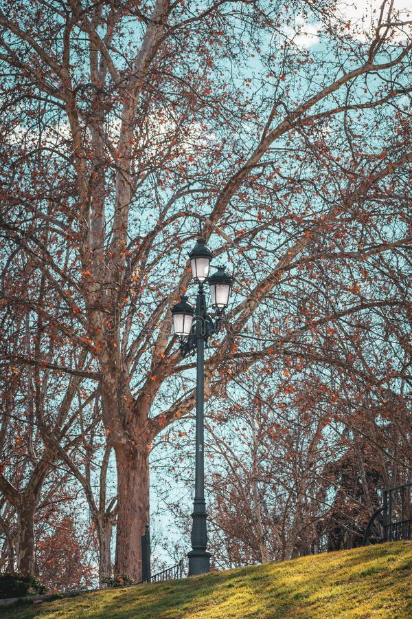 Autumn sunny day in the park. Blue sky, street light in the center, surrounded by trees and grass in a beautiful light royalty free stock photography