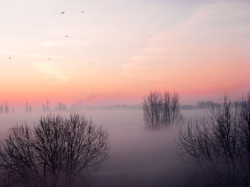 Autumn Sunrise immagine stock