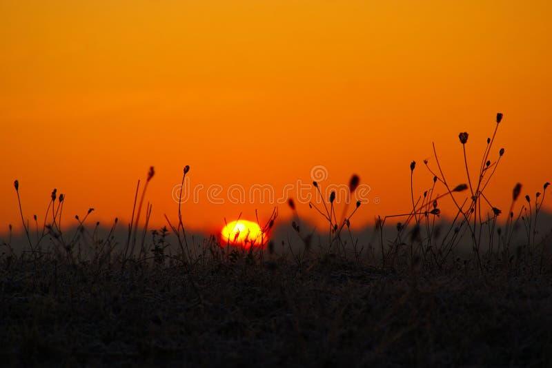 Autumn Sunrise stock afbeeldingen