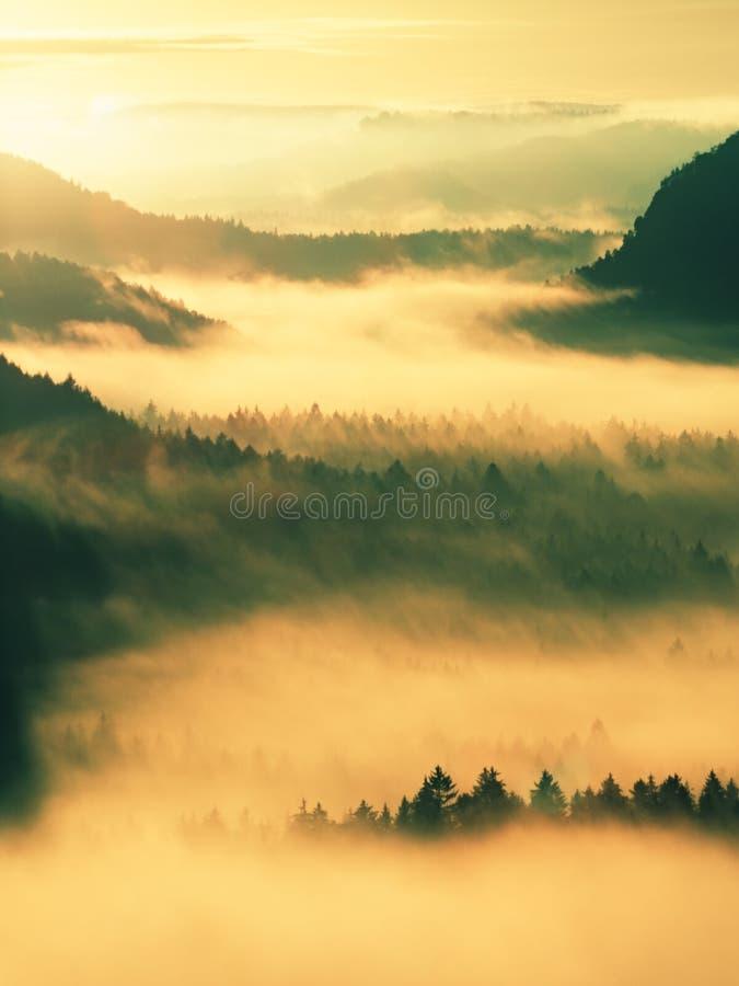 Autumn Sunrise Belle montagne de la Bohême Les cimes d'arbre et les crêtes des collines accrues du brouillard jaune et orange ont photos libres de droits