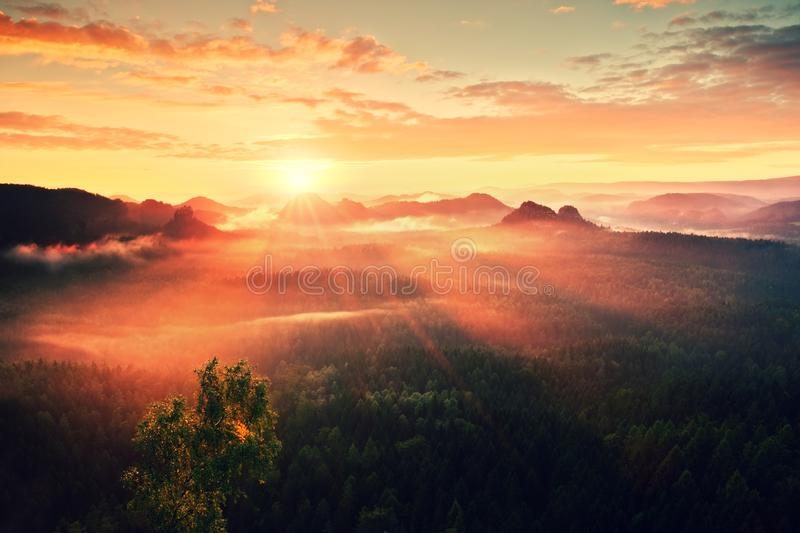 Autumn sunrise panorama in a beautiful mountain within inversion. Peaks of hills increased from heavy fogg. Autumn sunrise panorama in a beautiful mountain stock photos