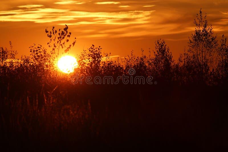 Autumn Sunset royalty-vrije stock foto's