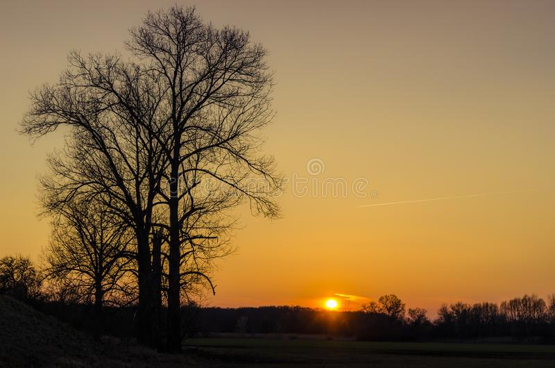 Autumn sunset over black forests. stock photos