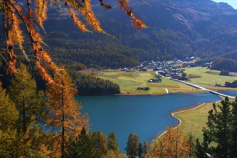 Autumn swiss landscape royalty free stock image