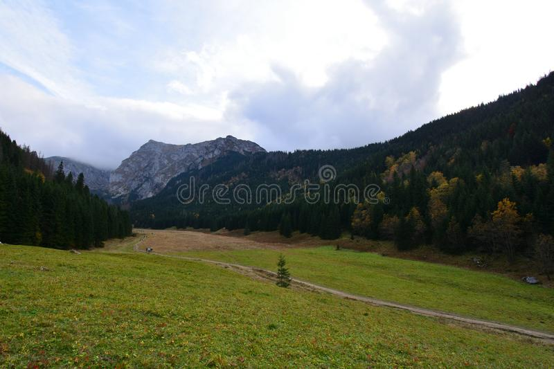 Autumn in the Tatra Mountains. Cloudy day in the Small Meadow Valley. Still green everywhere but fall is slowly taking over royalty free stock images