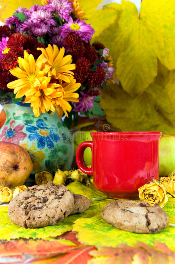 Autumn tea. Studio shot of cup of tea and chocolate chip cookies with autumn decorations stock image