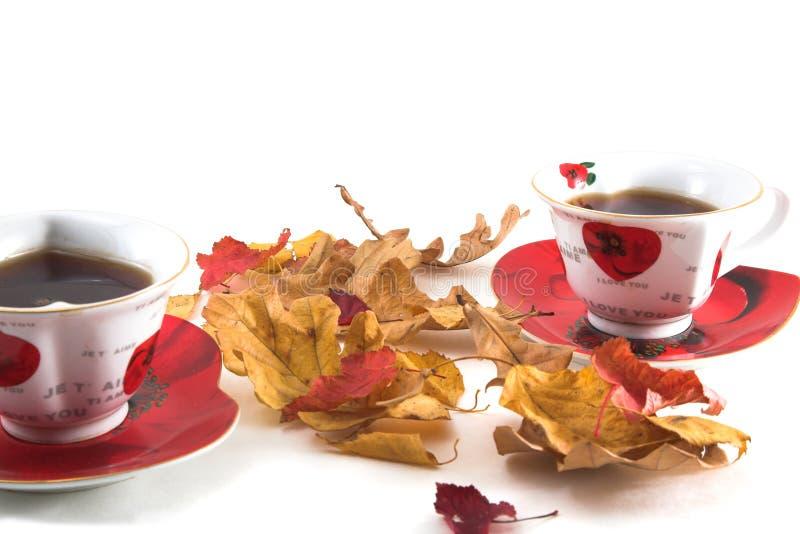 Autumn tea-drinking royalty free stock photography