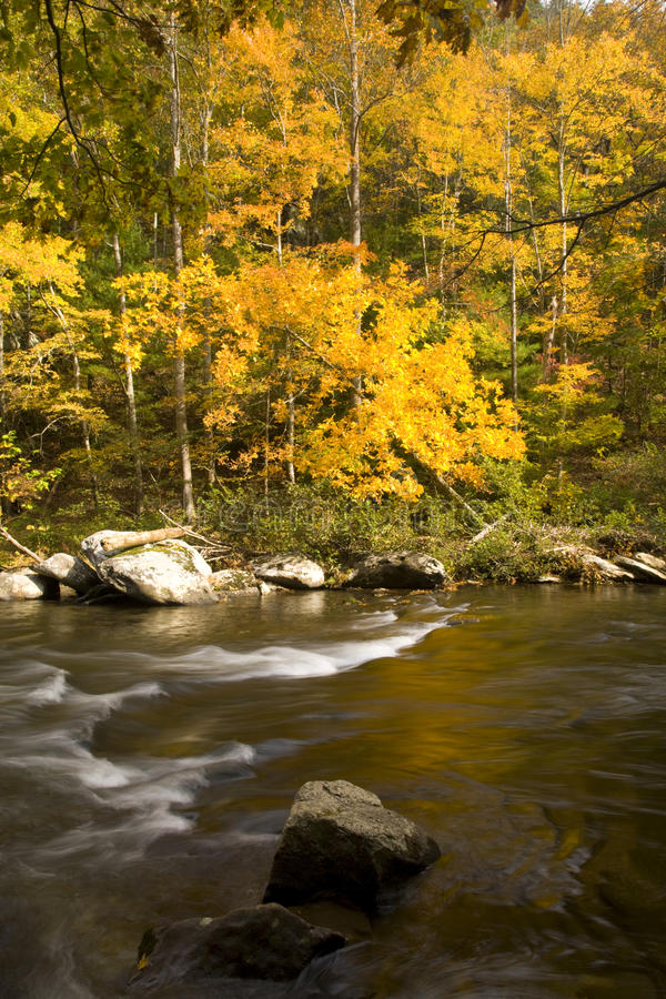 Download Autumn, Tellico River, Cherokee NF Stock Image - Image: 17674837