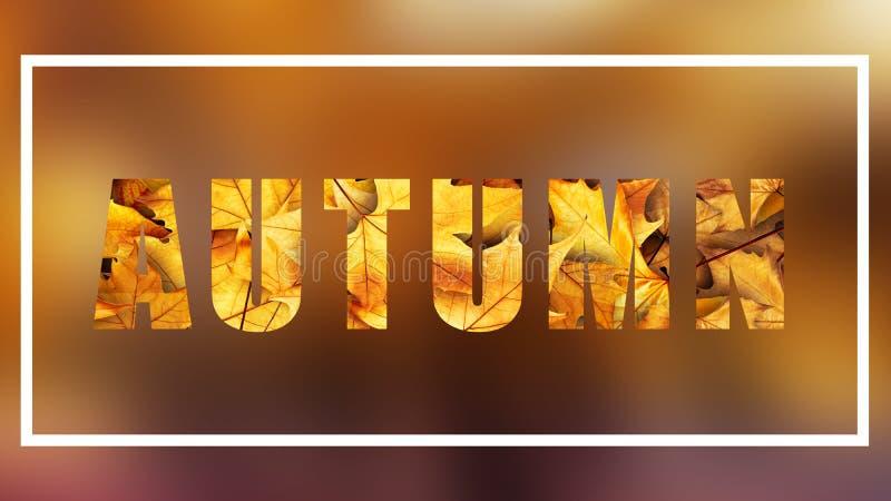 autumn text on blurry background royalty free illustration