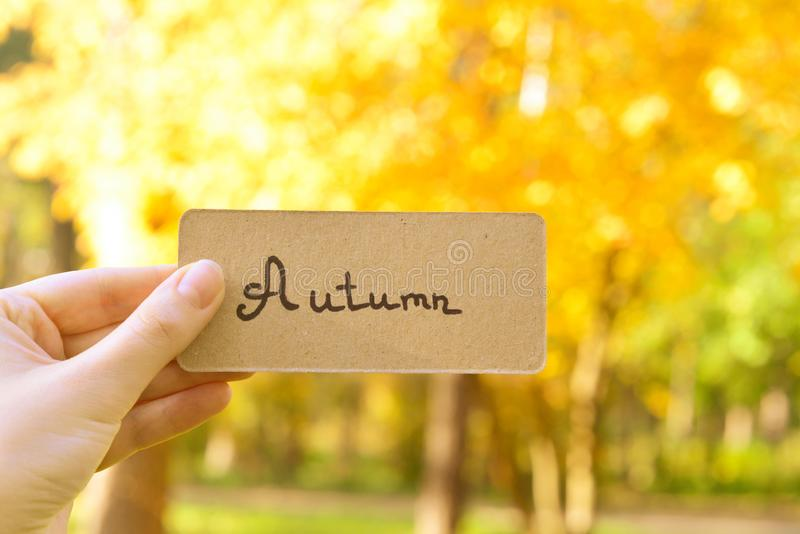 Autumn text on a card.  Girl holding card in autumn park in sunny rays. Top view royalty free stock images