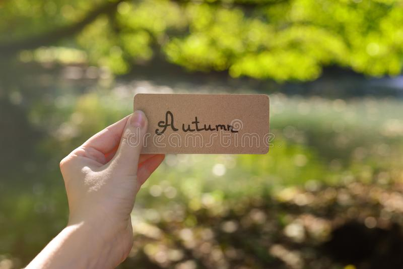Autumn text on a card.  Girl holding card in a field with a river  in sunny rays royalty free stock photos