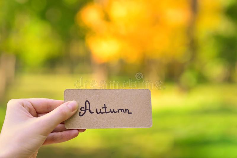 Autumn text on a card.  Girl holding card in autumn park in sunny rays royalty free stock photography