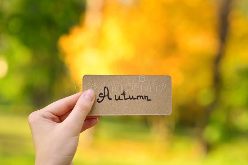 Autumn text on a card.  Girl holding card in autumn park in sunny rays. Top view royalty free stock photo