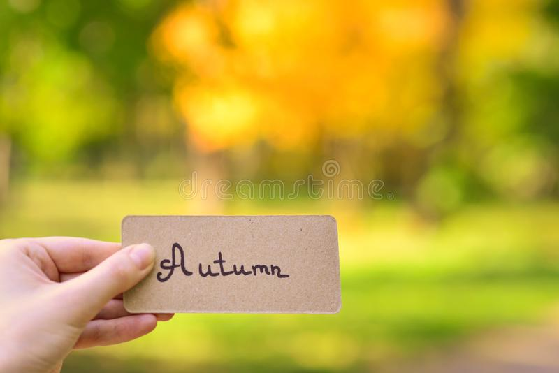 Autumn text on a card.  Girl holding card in autumn park in sunny rays. Top view stock photo