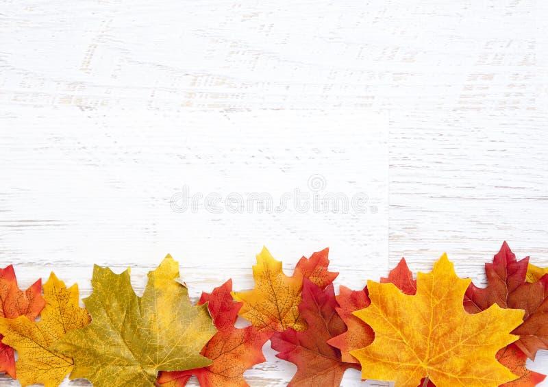Autumn Thanksgiving Background fotografía de archivo