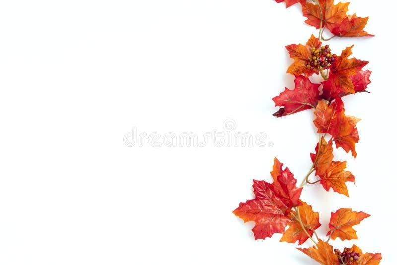 Autumn Thanksgiving Background immagini stock libere da diritti