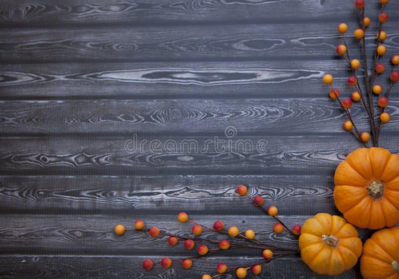 Autumn Thanksgiving Background photos stock