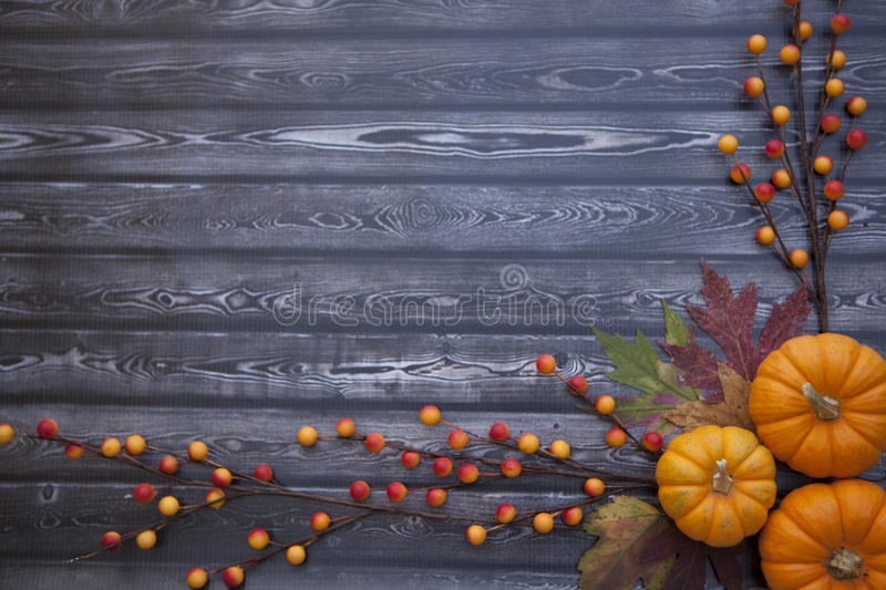 Autumn Thanksgiving Background royaltyfria foton