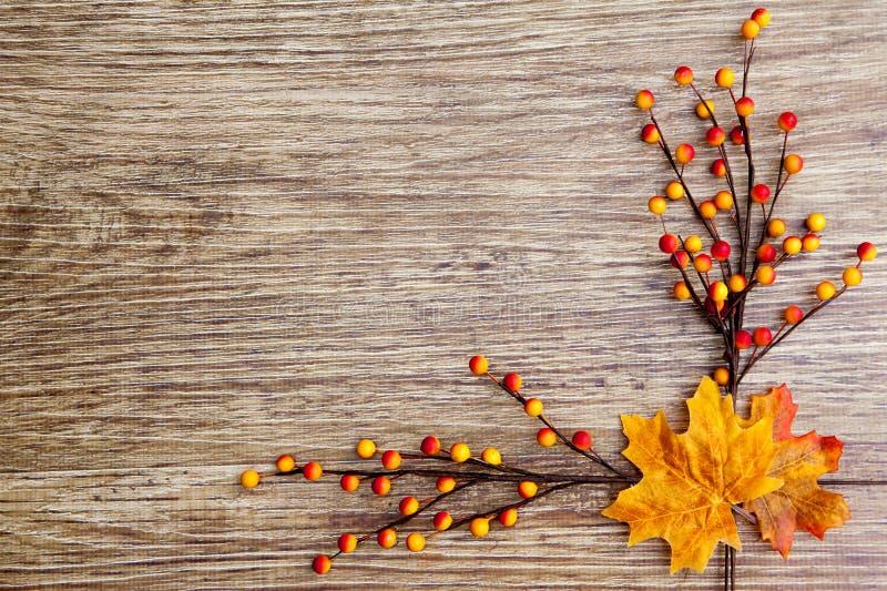 Autumn Thanksgiving Background stock foto's
