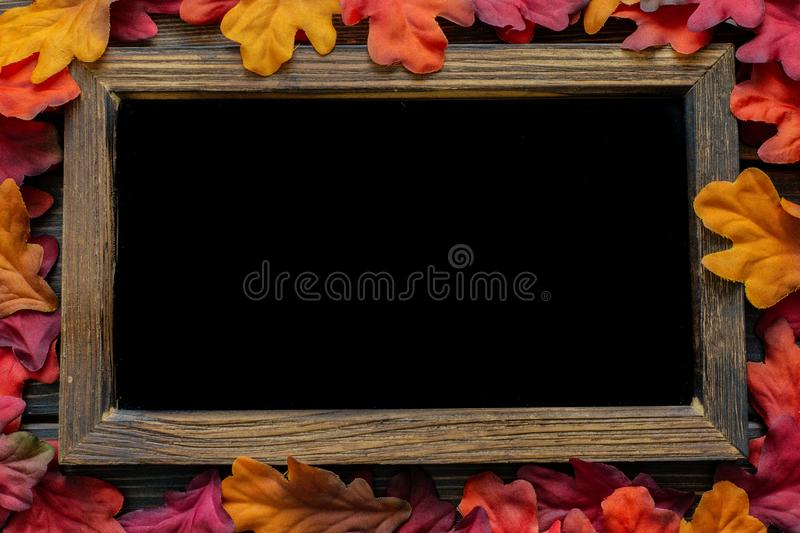 Autumn Thanksgiving background and frame with leaves and small pumpkins surrounding the frame stock photo