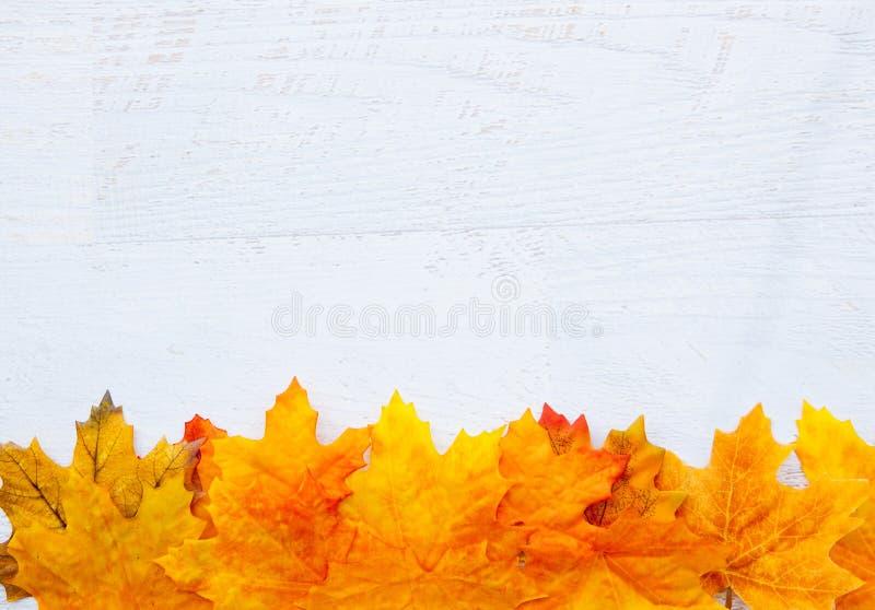 Autumn Thanksgiving Background royalty free stock photos