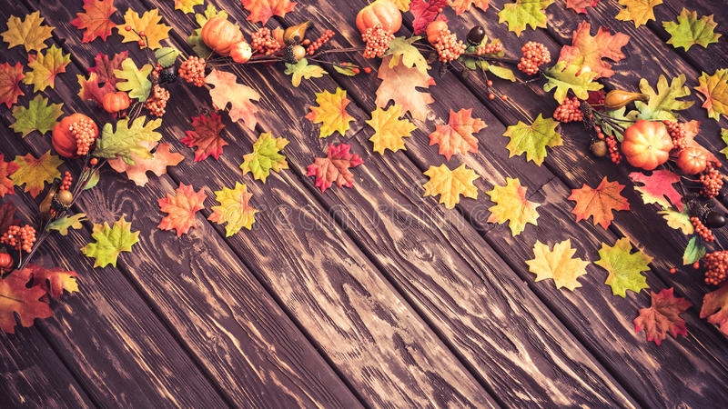 Autumn Thanksgiving Holiday imagens de stock royalty free