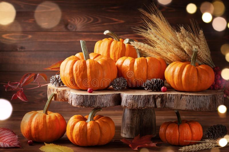 Autumn Thanksgiving still life. Pumpkins and leaves on wooden background royalty free stock photo