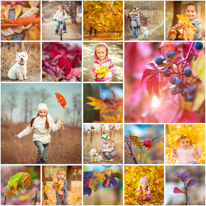 Autumn theme. Collage of photos on a autumn theme stock photo