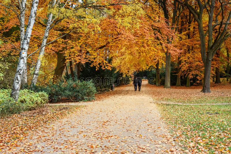 Autumn Tiergarten Park in Berlin. Germany. Beautiful Autumn Tiergarten Park in Berlin. Germany royalty free stock photography