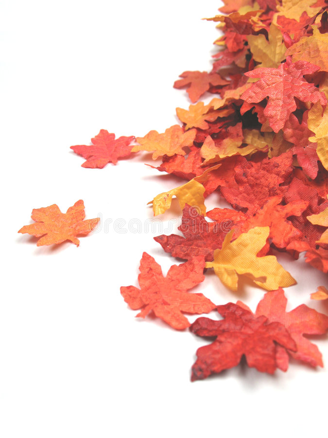 Free Autumn Time Stock Image - 6446491