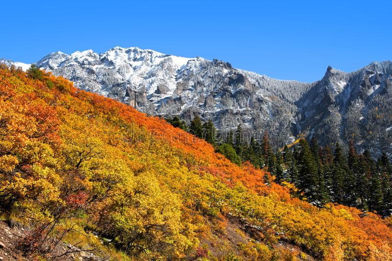 Autumn time in Colorado near Ourey. Early snow in autumn time in Colorado near Ourey royalty free stock images