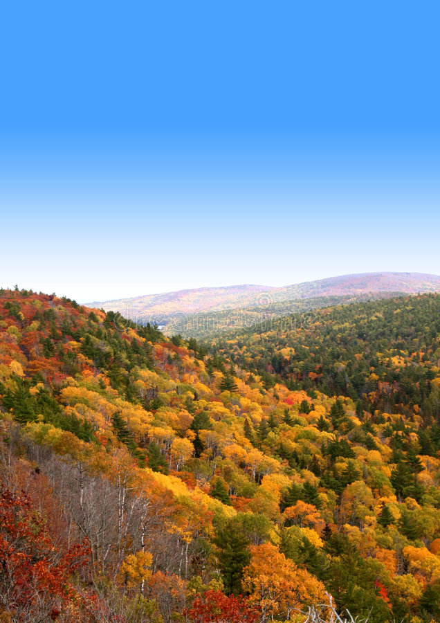 Download Autumn time in mountains stock photo. Image of little - 1354808
