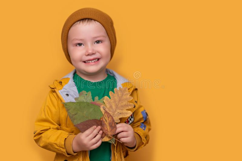 Autumn time. Smiling baby with yellow leaves in hand. Seasonal fashion. Autumn clothing. kids fashion. Leaf fall. boy in golden royalty free stock image