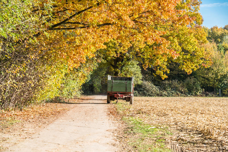 Download Autumn Time Of The Year Has Arrived Stock Photo - Image of arrived, time: 83704262