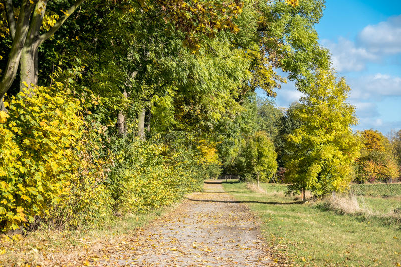 Download Autumn Time Of The Year Has Arrived Stock Image - Image: 83705919