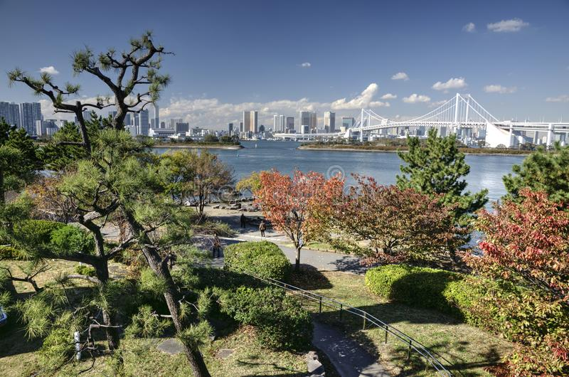 Autumn in Tokyo bay, Japan. Autumn in hidden park in Tokyo Bay Japan with view on skyscrapers and bridge on background during nice sunny day