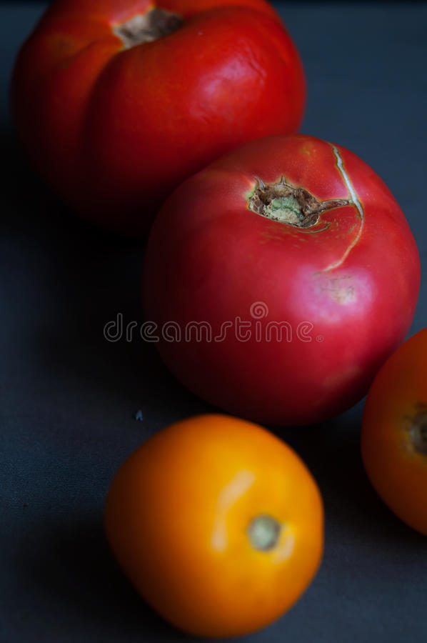 Autumn tomatoes on table