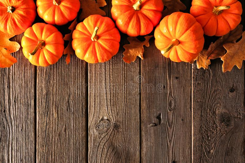 4 525 Pumpkins Fall Leaves Border Photos Free Royalty Free Stock Photos From Dreamstime