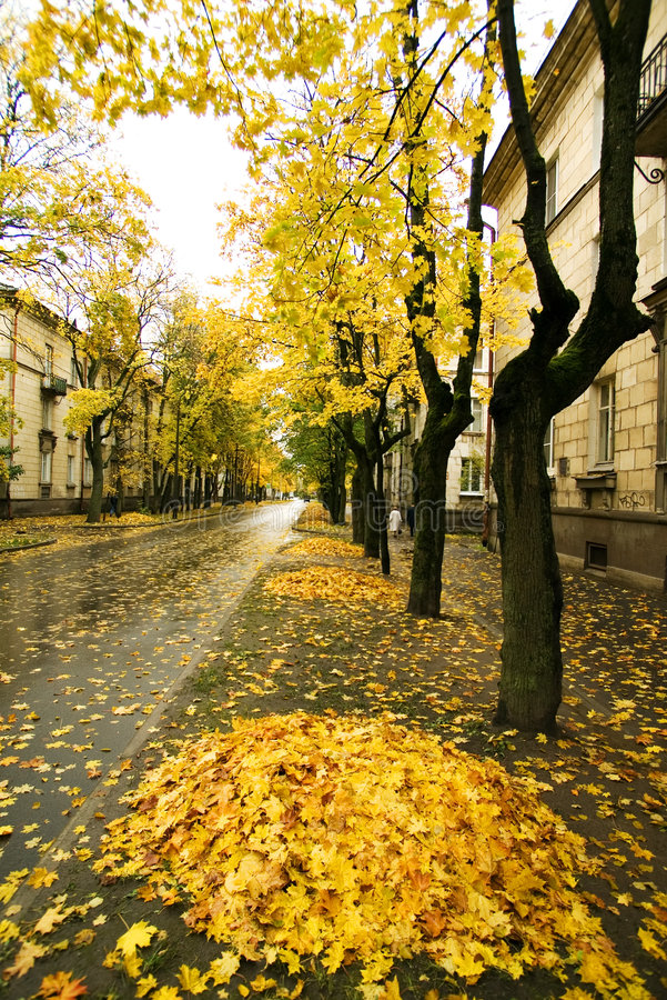 Download Autumn In Town Stock Images - Image: 6617564