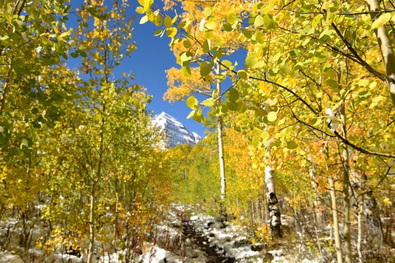 Autumn Trail royaltyfri foto