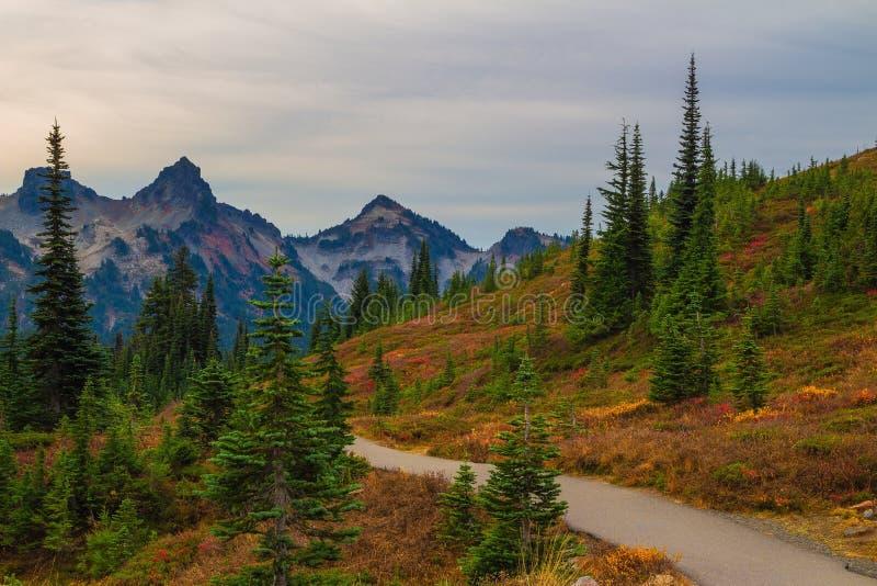 Autumn Trail in Mt. Rainier National Park, Washington State. Tatoosh Mountains in Autumn at Mt. Rainier National Park,Washington State stock photos